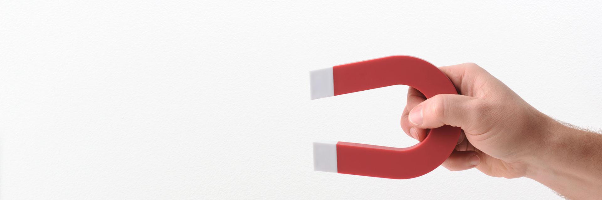 Magnetvlies von Surtech – magnetische Tapete für die Wand